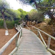 Camino Natural de Rota