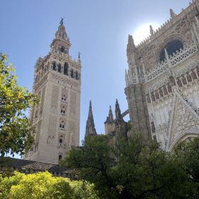 Cathedral Seville From A Distance